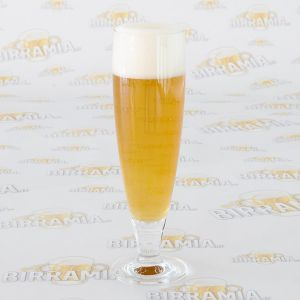 Beer Glass Pegasus 0,4 litri - 6 pcs package