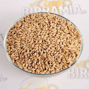 Malt Grain Rauchmalz (smoked malt)  5 kg, Weyermann ®