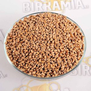 Malt Grain Toasted Wheat 1 kg, Crisp Malting
